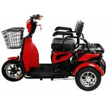 ESH-6112 ECO Three Wheel Electric Scooter