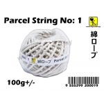 CT-1 Parcel String No: 1