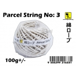 CT-3 Parcel String No: 3