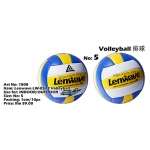 1808 Lenwave LW-0573 Volleyball